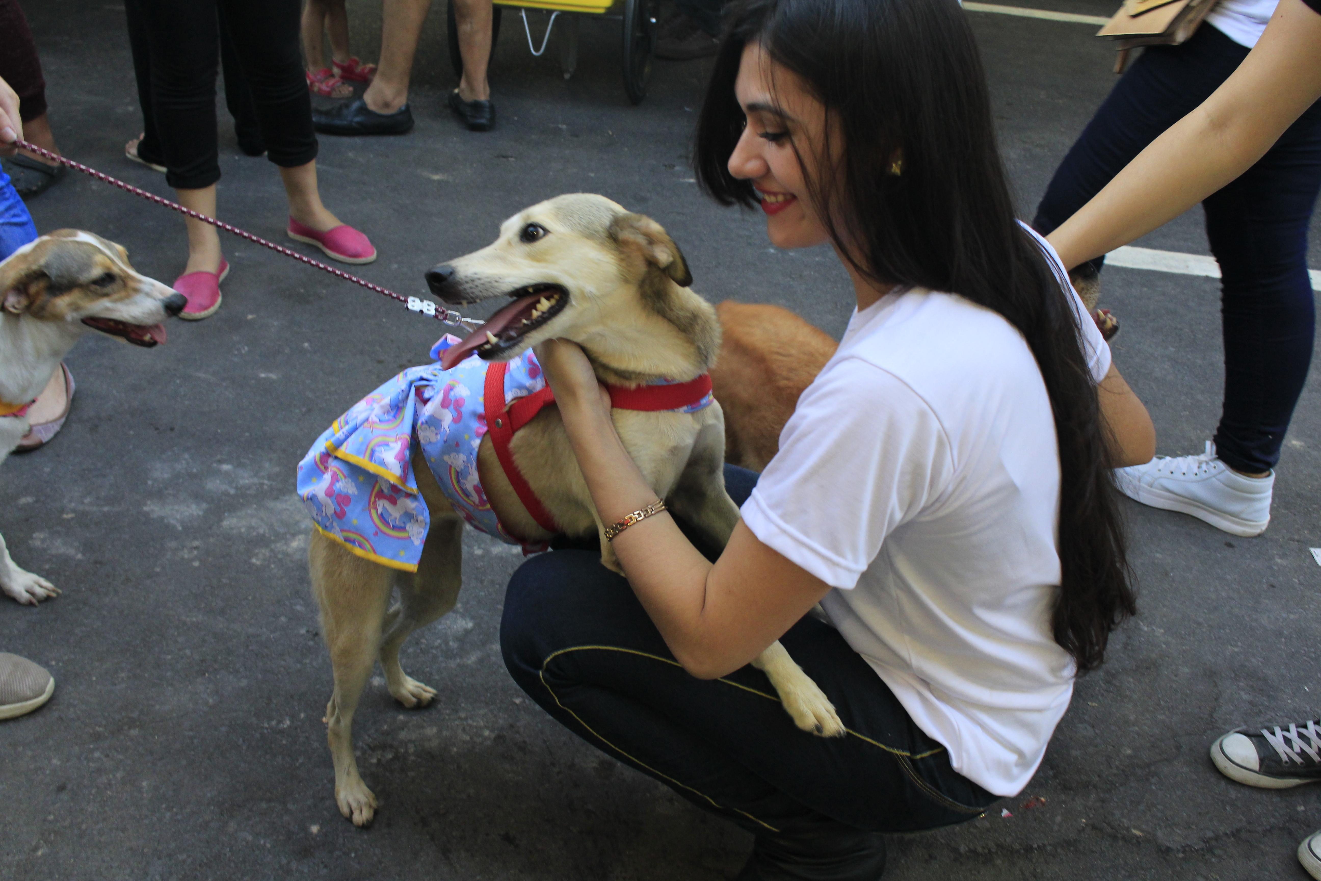 Acadêmicos de Medicina Veterinária promovem feira de Adoção de Animais
