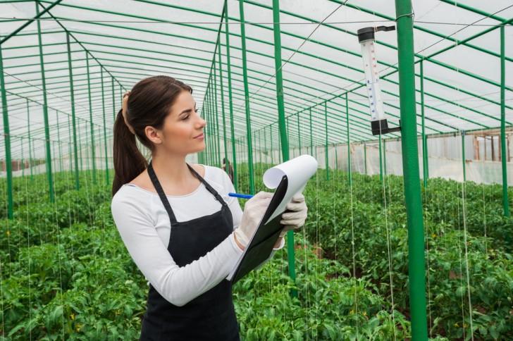O que se faz em Engenharia Agronômica?